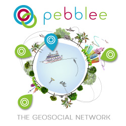 The Geosocial Network